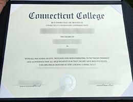 Connecticut College degree