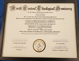 North Central Theological Seminary degree