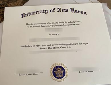 University of New Haven degree